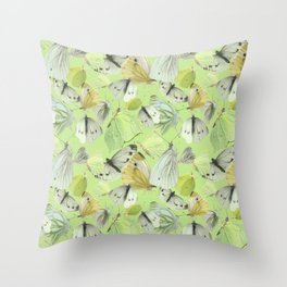 Butterfly | Pieridae Throw Pillow