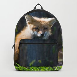 I Am the Fox. Who Are You? Backpack