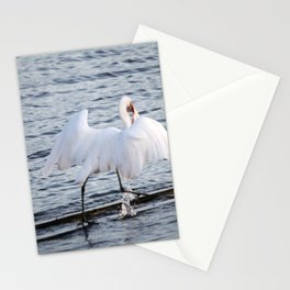 Egret On The Move With Supper Stationery Cards