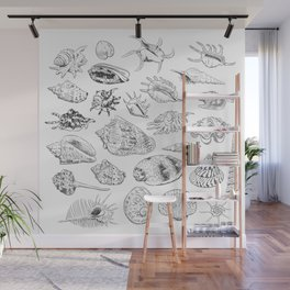 collection of sea shells, black contour on white background Wall Mural