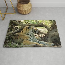 Asian Bengal Tiger Wildcat Resting Forest Rug