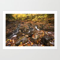 Mountain creek and golden autumn leaves Art Print
