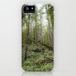 Fern Alley - Redwood Forest Nature Photography iPhone Case