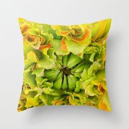 Pon Pon Trilly Ranunculus Throw Pillow