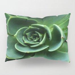 GRAY-GREEN CACTUS SUCCULENT ART Pillow Sham