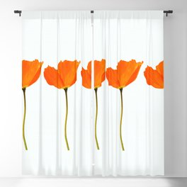 Three Orange Poppy Flowers White Background #decor #society6 #buyart Blackout Curtain