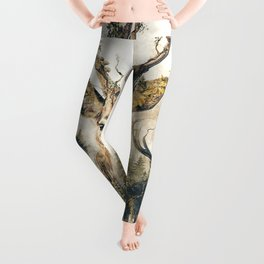 Deer Surrealism Leggings