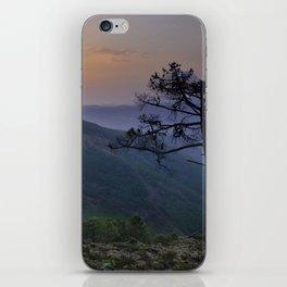 tree dreams iPhone Skin