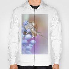 Snail on Grape Hyacinths Hoody