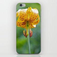 Columbia Lily iPhone & iPod Skin