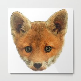 baby Fox face, little fox Metal Print