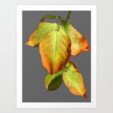 Autumn in suspension Art Print