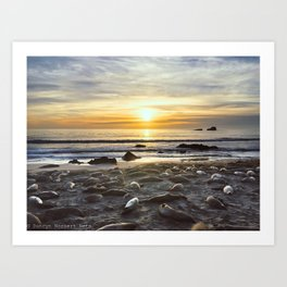 Sunset with the Seals Art Print