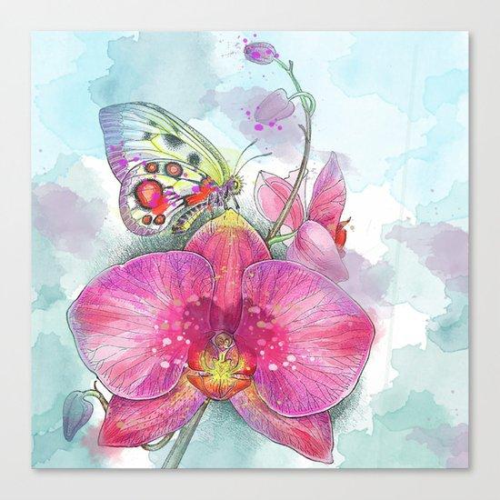 Orchids 03 Canvas Print