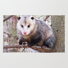 Possum in a Tree Rug