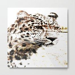 Leopard In Wilderness Sepia Metal Print
