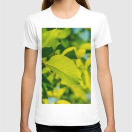 Fresh Green Tree Leaves In Summer, Tree Leaf, Intense Vivid Green, Nature In Summer, Nature Colors T-shirt