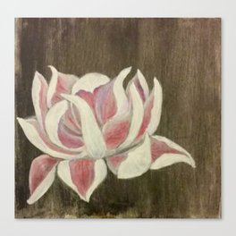 White and Pink Lotus Canvas Print