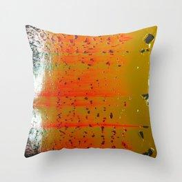 Bio-morphic Acid Wash Throw Pillow