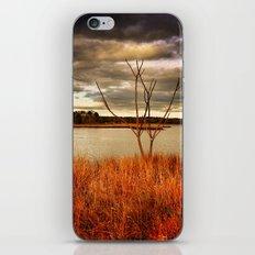 Fall Stalk iPhone Skin
