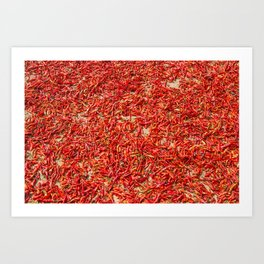 Chillies and Peppers Art Print