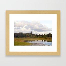 Florida Everglades Reserve Framed Art Print
