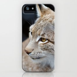 Young lynx close-up portrait iPhone Case