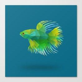 Japanese Fighting Fish. Canvas Print