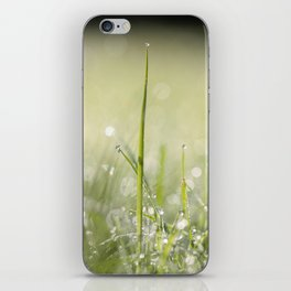 Delicate iPhone Skin