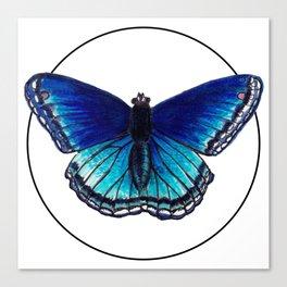 Blue Morpho Butterfly - Marker Illustration Canvas Print