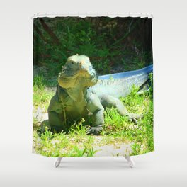 Iguana and Chill Shower Curtain