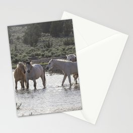 Cooling Off Stationery Cards