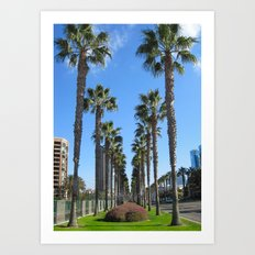 San Diego California Palm Trees Art Print