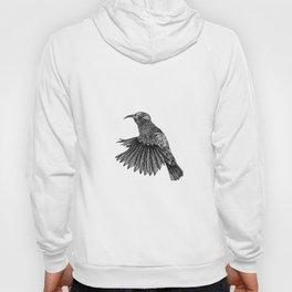 Colibri Hoody