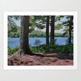 Butler Pond, Adirondacks Art Print