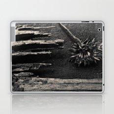 Dandelion by Jean-François Dupuis Laptop & iPad Skin