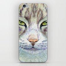 Green-eyes cat 875 iPhone & iPod Skin