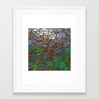 bamboo Framed Art Prints featuring Bamboo by dominiquelandau