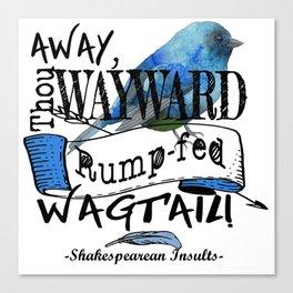 Rump-fed Wagtail Canvas Print