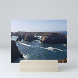 Mendocino Headlands Mini Art Print