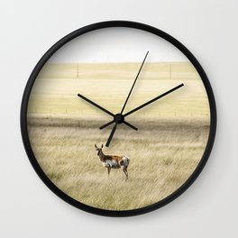 A lone antelope on the Laramie Plains a high grassland south of Laramie Wyoming Wall Clock
