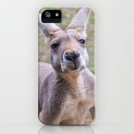 Cheeky iPhone Case