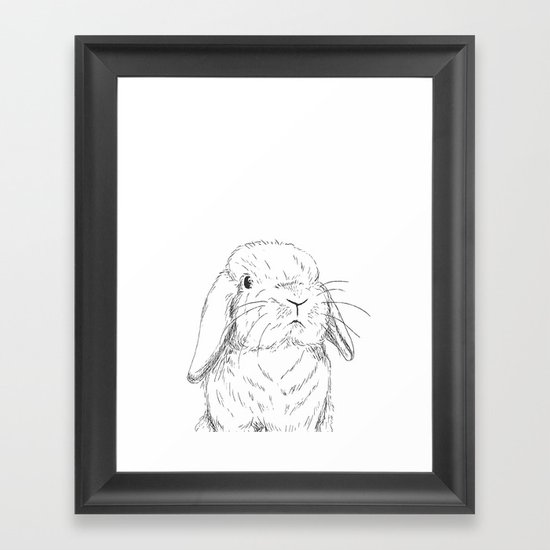 Curious Holland Lop Bunny by jdsinger479