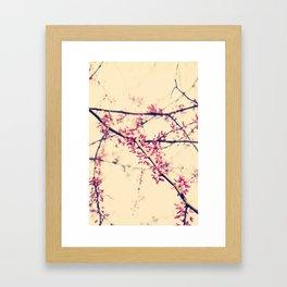 almost bloomed Framed Art Print