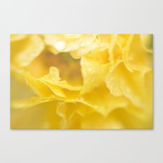 April showers in yellow Canvas Print