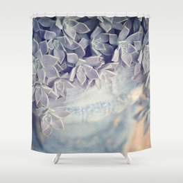 Potted Succulent Shower Curtain