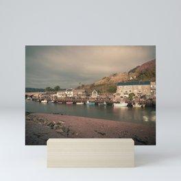 Seaton Harbour Cottages Mini Art Print