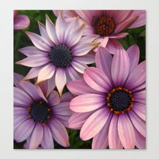Equally Different Canvas Print