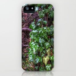 Gnarled vines & Ivy on a Misty Day iPhone Case