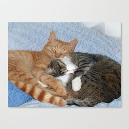 Sleeping Sweeties Canvas Print
